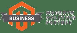 Magento-business-1