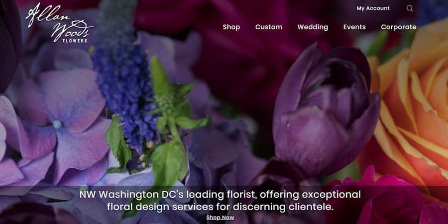 Allan Woods Flowers Great Product Photography